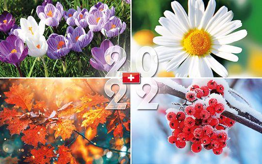Scheckkarten-Kalender Schweiz, neutral